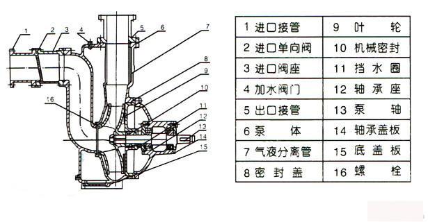 无堵塞自吸排污泵结构图